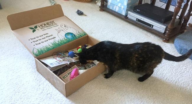 natural-cat-toys