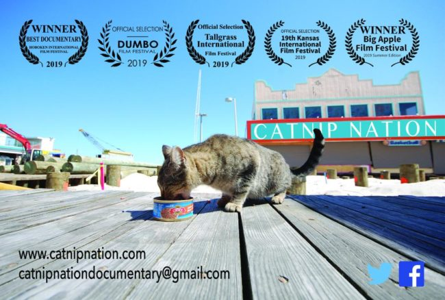 catnip-nation-documentary