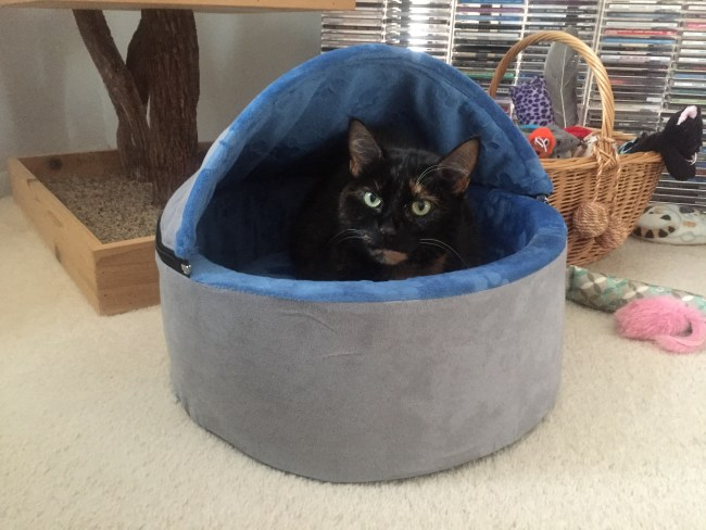 self-warming-cat-bed