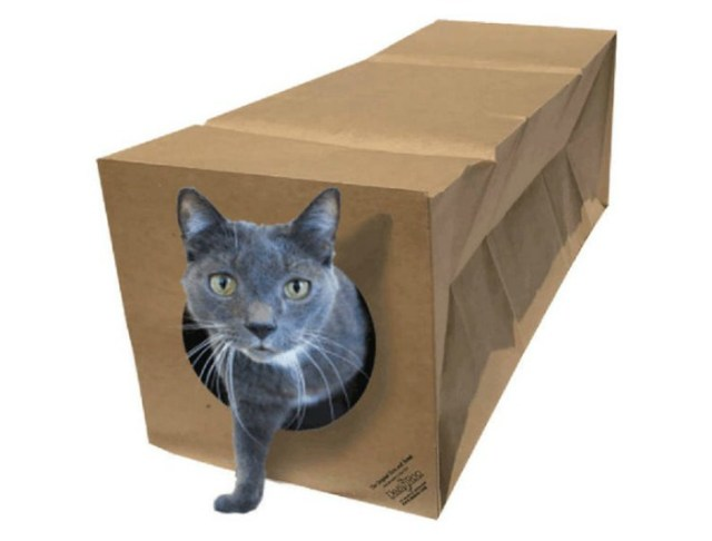 cat-tunnel