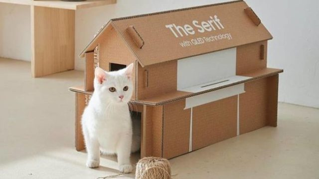 samsung-tv-boxes-cat-houses