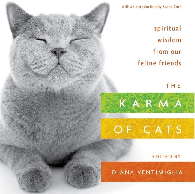 the-karma-of-cats