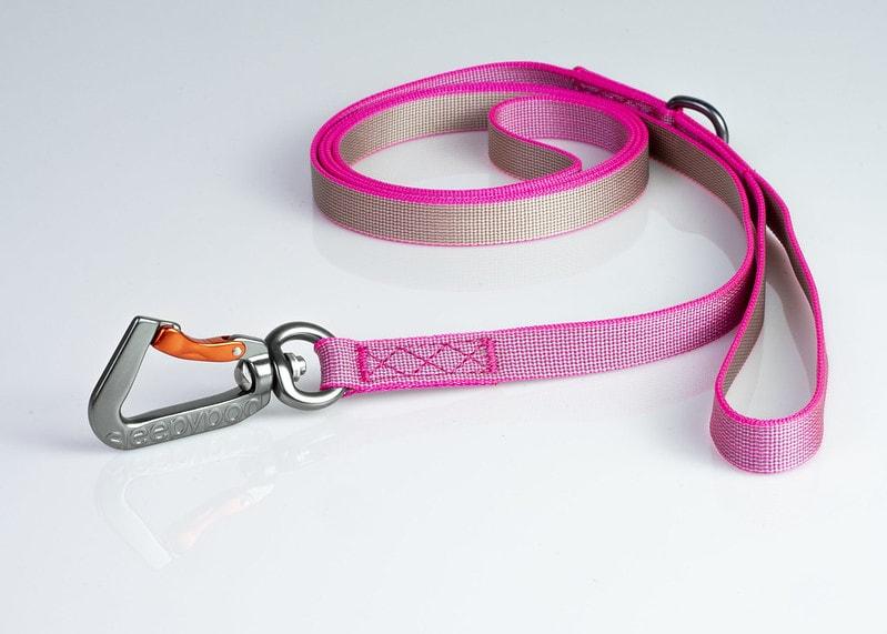 slim-leash-cat