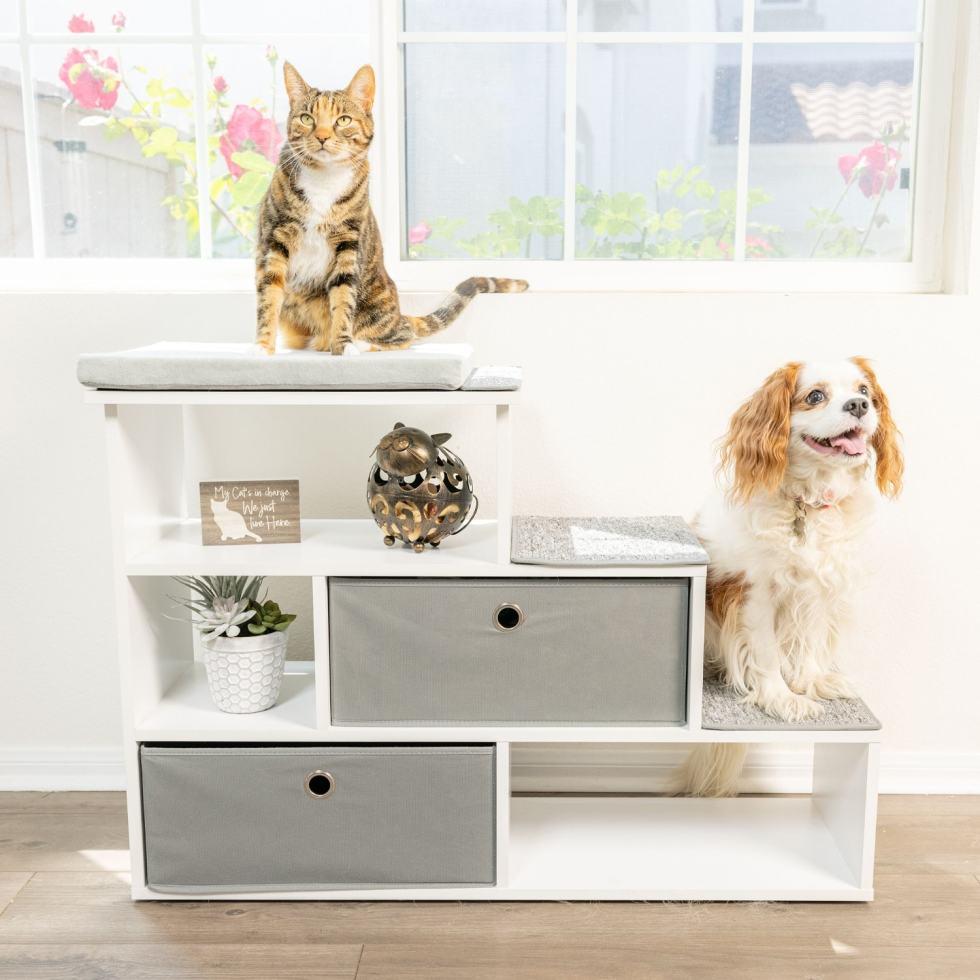 cat-furniture-shelf-storage