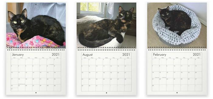 2020-conscious-cat-calendar