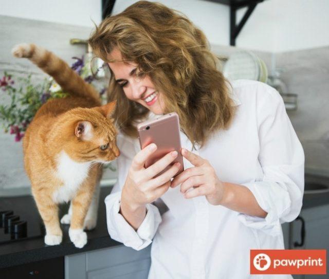 cat-woman-phone