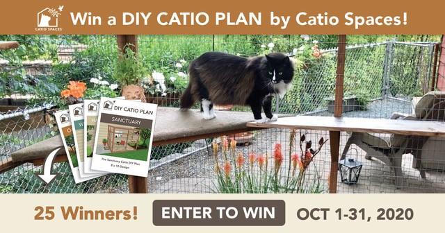 catio-cat-enclosure