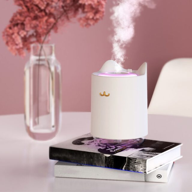 personal-humidifier