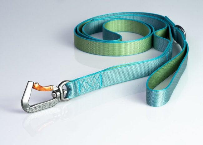 cat-leash
