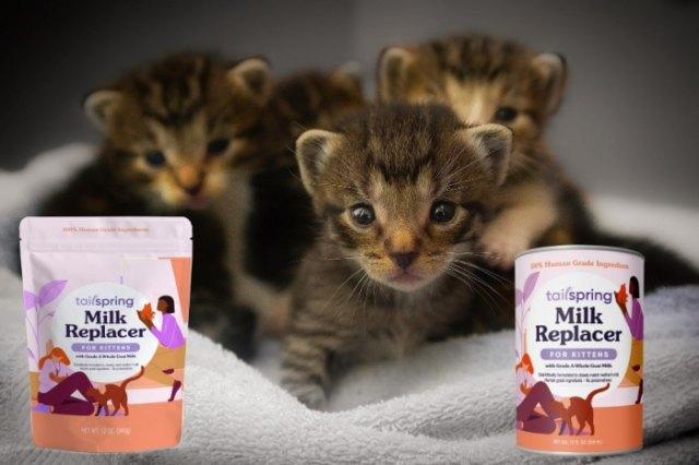 tailspring-kitten-milk-replacer