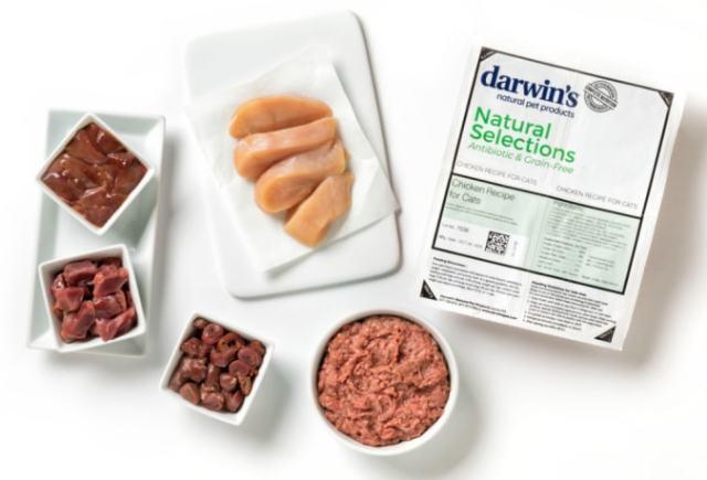 darwins-natural-selections