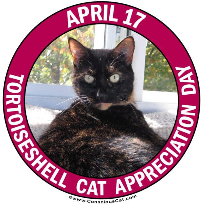 tortoiseshell-cat-appreciation-day