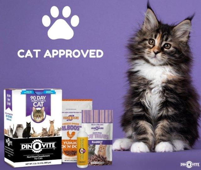 dinovite-cat-supplements
