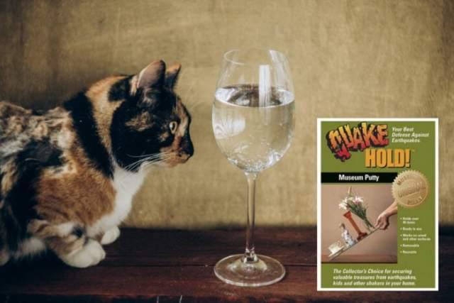 cat-glass-museum-putty