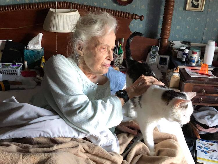 101-year-old-woman-adopts-oldest-shelter-cat
