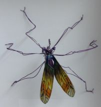 Mutant Crane Fly