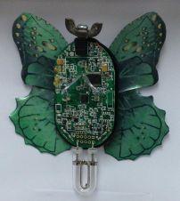 Morser Wanderer Butterfly
