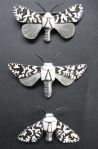 Lichen Moth Brooches