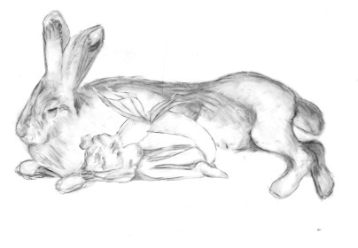 rabbit_and_fairy_sketch