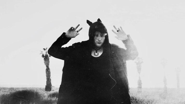 Crywolf widow reimagined