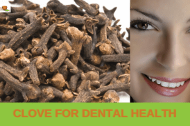 Is clove effective for dental health?