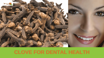 Is clove effective for dental health?