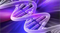 double-helix-AndreaLaurel