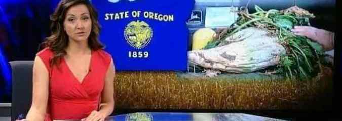 Oregon Counties Defeat Monsanto, Ban GMO Crops