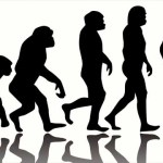 Human Evolution 'Definitely Not' Over, Expert Says