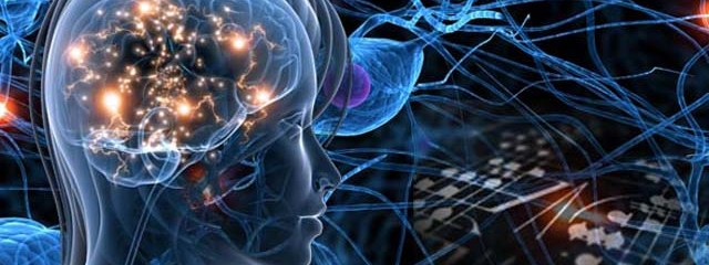Where Do Our Thoughts Physically Exist?