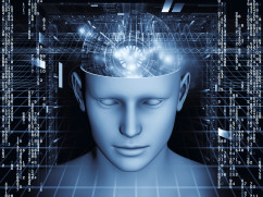 The holographic mind