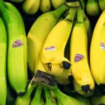 Science Explains What Happens To Your Body When You Eat Two Bananas A Day