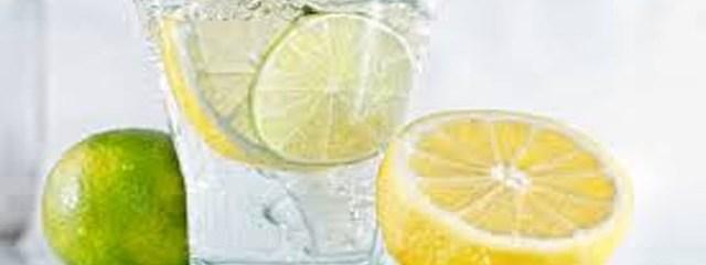 12 Health Benefits of Lemon Water: A Simple Health Tonic
