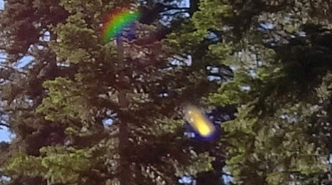 The picture that piqued my curiosity about energy light beings - taken near the base of Mt. Shasta.