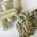 Cannabis Capsules Help Elderly Man Overcome Terminal Cancer