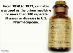 CannabisPharmacopoeia