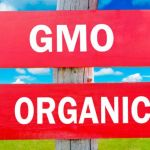 The Science Behind What Happens to Your Body When You Go Organic