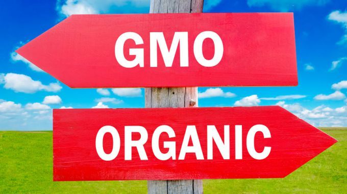 123rf-GMOvsOrganic-28219887_m680x380