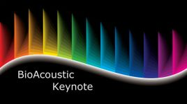 How Universal Frequencies Are Affecting YOU [F[February 23-28, 2015]width=