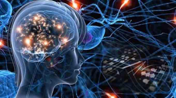Brain-flow