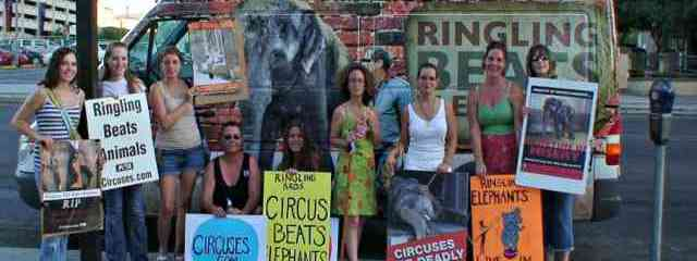 How a Community of People Got Ringling Bros. to Drop Elephant Acts
