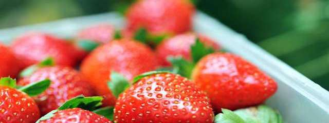 Seasonal Eating: 18 Recipes For Your Fresh-Picked Juicy Strawberries