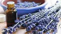 enhance your intuition with essential oils