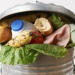 10 Ways To Stop Household Food Waste