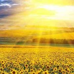 10 Positive Ways to Shine Brilliantly and Really LIVE