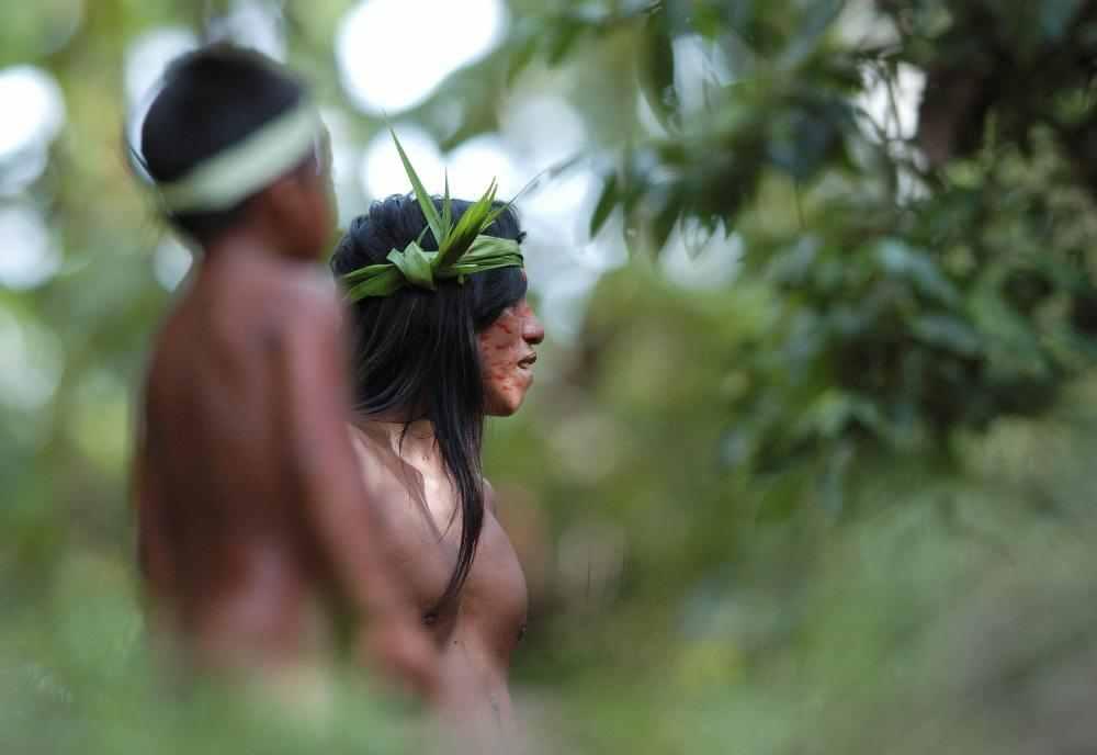 Rainforest tribe-compressed