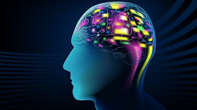 Electrical activity within the brain means that our thoughts can be read and understood .