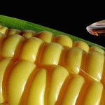 Newly Discovered Dangers of High Fructose Corn Syrup Are Alarming