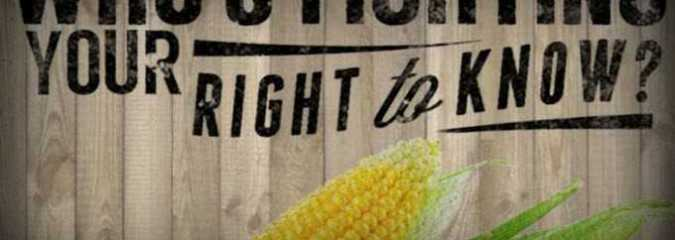 You Don't Matter. House Votes for Monsanto's Right to Deceive Consumers