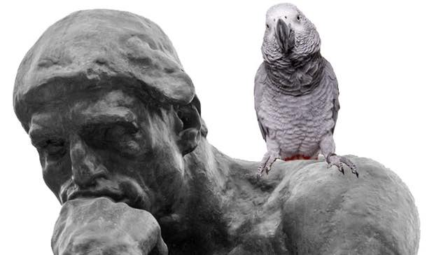 the thinker with parrot